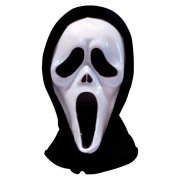 Halloween Scream Fancy Dress Costume Mask